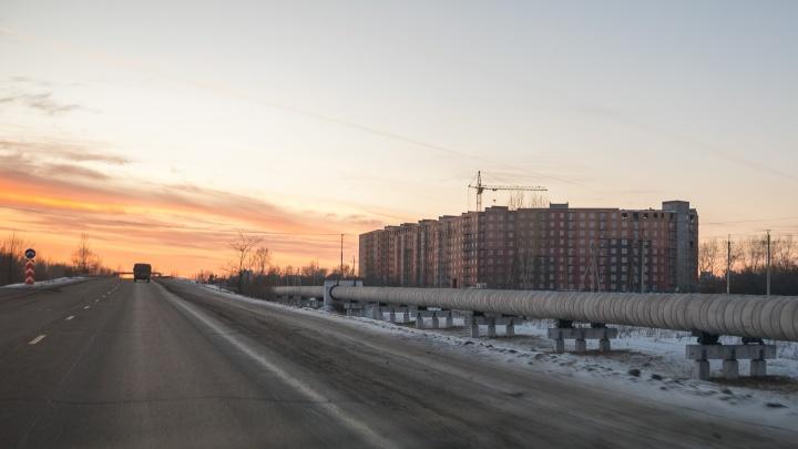 Изделия из костей первобытного бизона и носорога нашли при строительстве детского сада в Красноярске