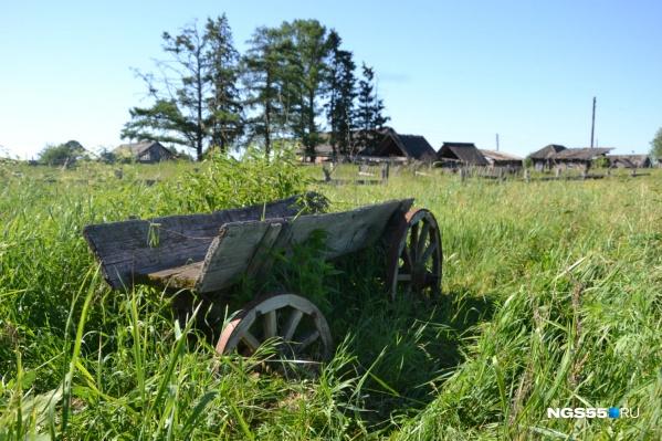 Живописная телега стала зарастать травой