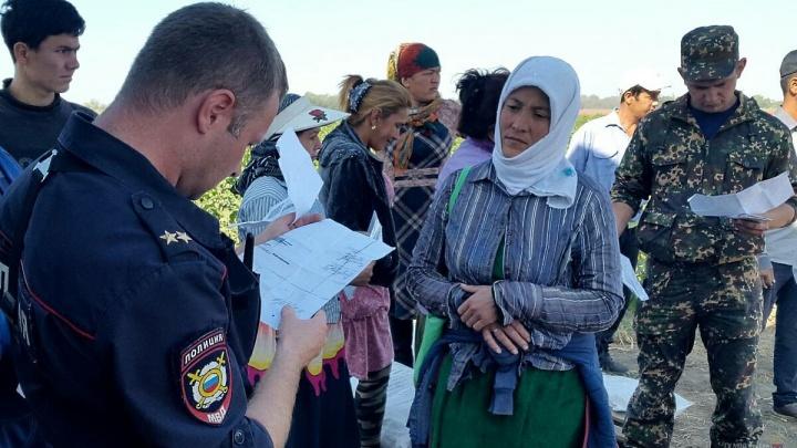 Более 200 узбеков прятались от волгоградских полицейских среди дынь и арбузов