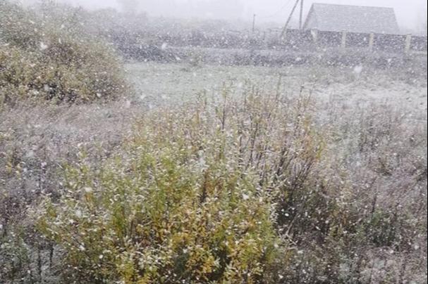 Жители Курганской области сообщили о первом снеге