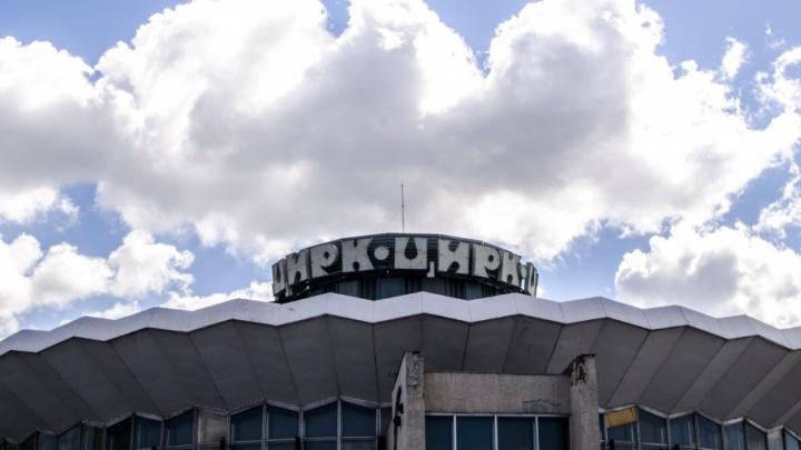 Новые кресла и арена: челябинский цирк отремонтируют к саммитам ШОС и БРИКС