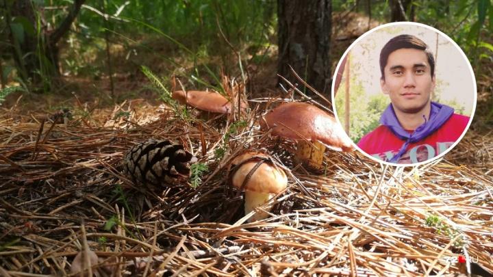 Зачем вы идете за грибами после дождя? Тюменец о чужих ошибках, своих секретах и народных приметах