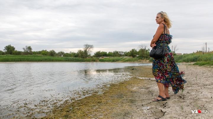 «Он нам очень дорог!»: волгоградцы пытаются спасти пруд в аэропорту от засухи и ненужности