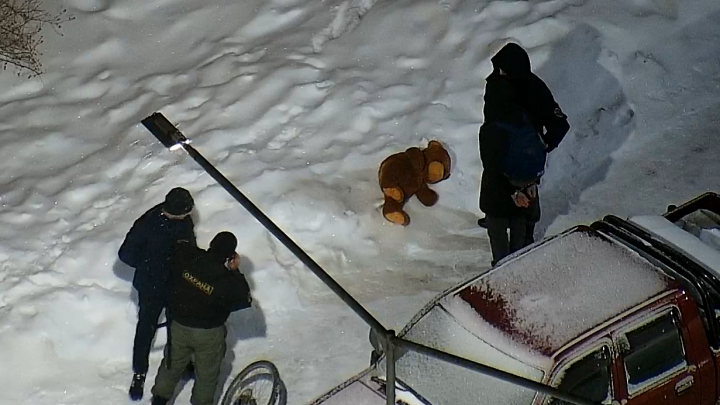 На Краснолесья среди ночи поймали похитителей плюшевого медведя и велосипеда