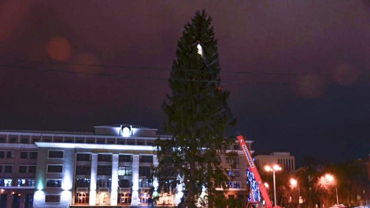 На Советской площади в Уфе все-таки поставили новогоднюю елку