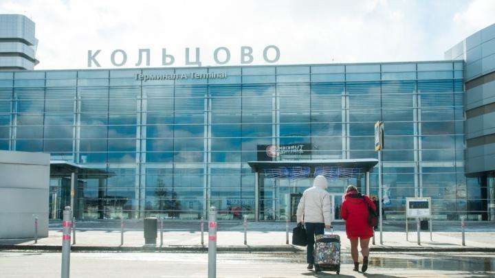 Бажов, Демидов или Жуков: в России завершилось интернет-голосование за присвоение имен аэропортам