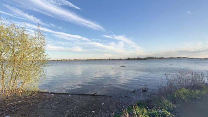 Неожиданно! На реке Самаре хотят насыпать полуостров площадью 4,7 га