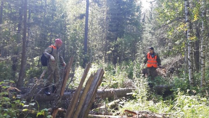Спасатели вывели из леса плутавшего трое суток грибника