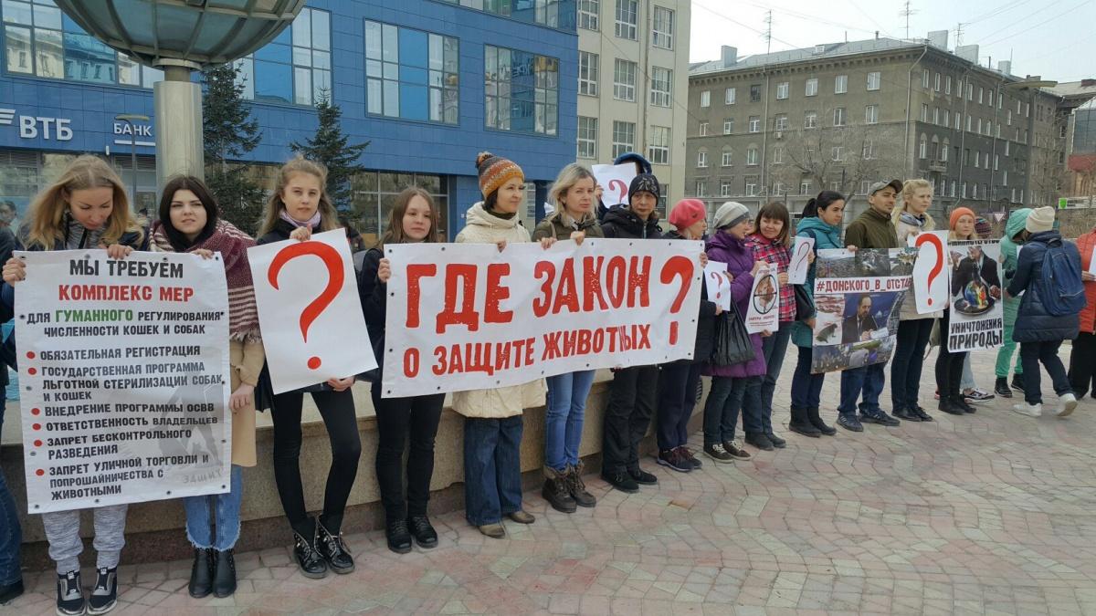 Акция прошла в сквере на Орджоникидзе