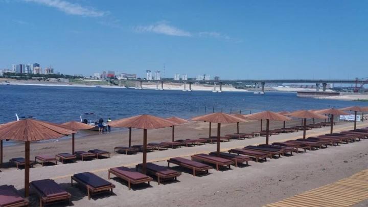 Платный пляж напротив центра Волгограда потребовали обозначить знаками «Купаться запрещено»
