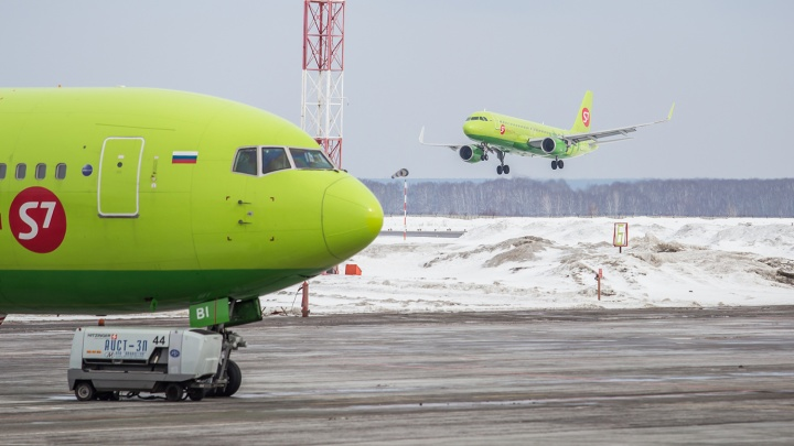 Летать будем больше: S7 Airlines увеличит количество рейсов по маршруту Новосибирск — Алма-Ата