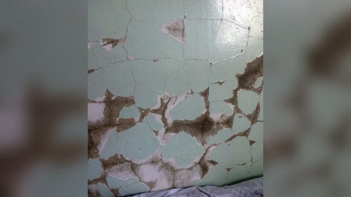 Падает штукатурка и трескаются стены: челябинцев шокировали палаты в детской больнице