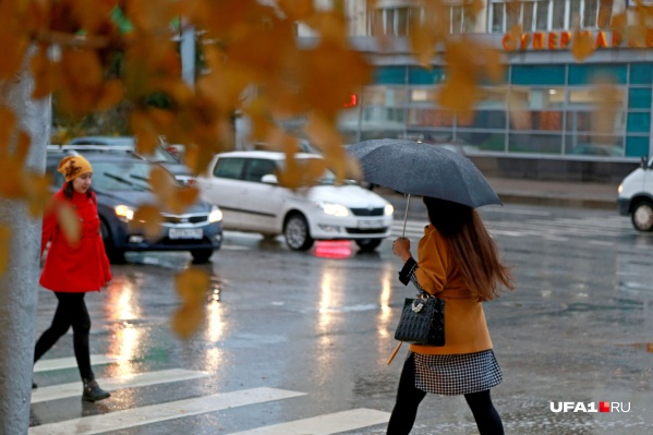 Небольшие дожди будут лить до конца недели