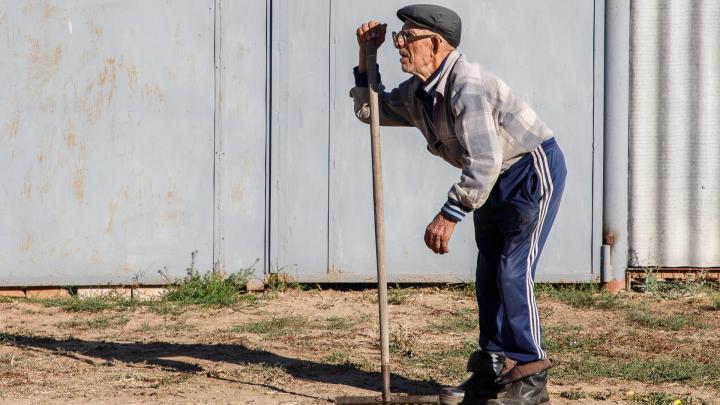 Пенсионерок в два раза больше: в Волгоградской области насчитали 255 тысяч пожилых мужчин