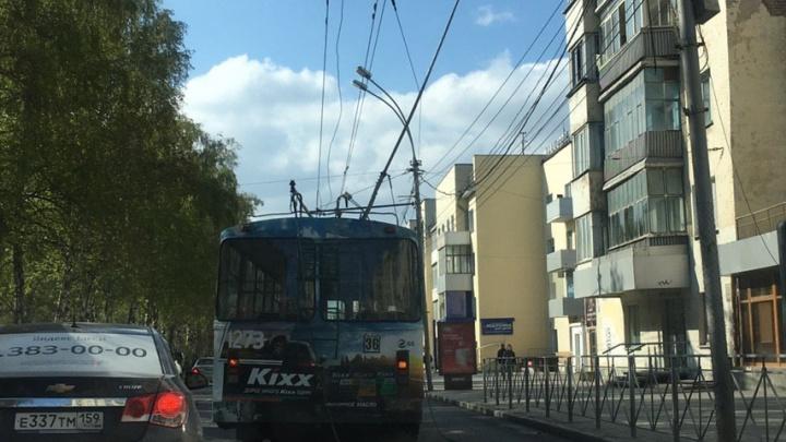 На Красном проспекте из-за обрыва проводов встали троллейбусы