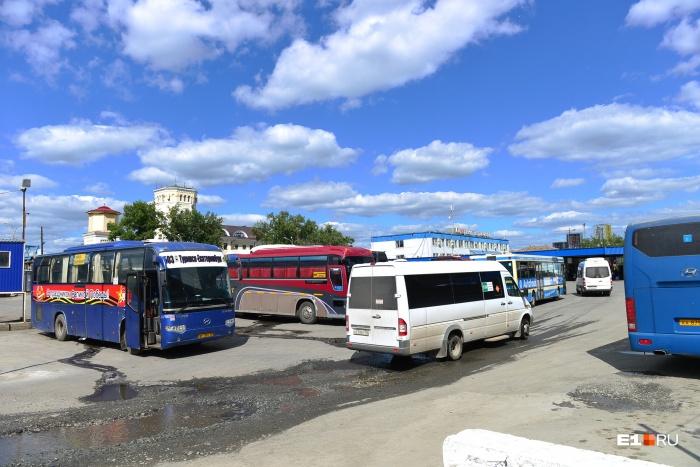 Отправиться на автобусе на море можно будет в июле и августе