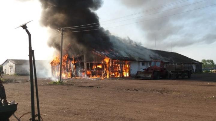 Под Уфой сгорел склад: огонь уничтожил две тонны зерна и трактор
