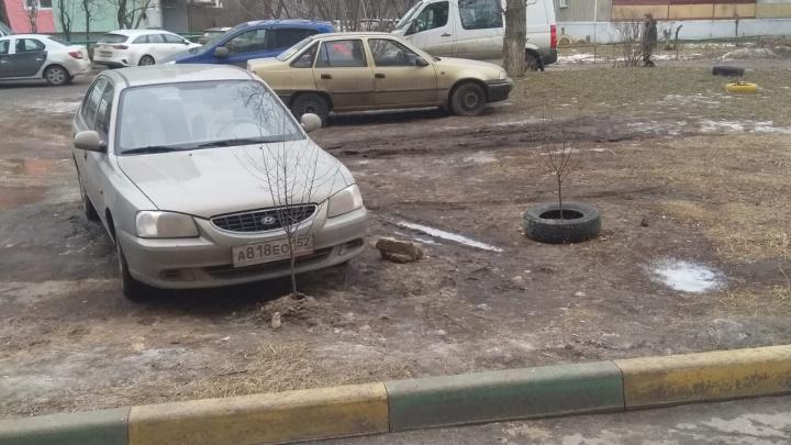 Короли парковки. Как припарковаться так, чтобы соседи захотели твоей крови