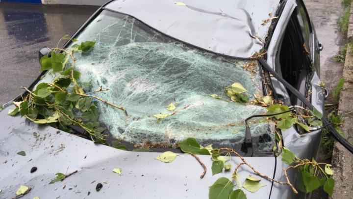 В Прикамье три человека попали в больницу с травмами из-за сильного шквалистого ветра