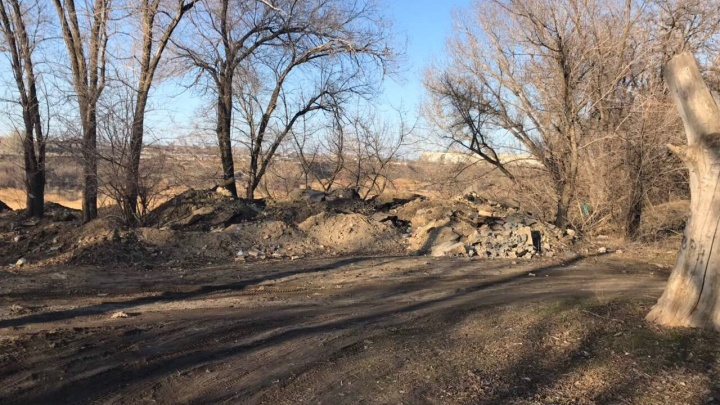 «Кучи на месте»: волгоградские чиновники обещают убрать заваленный мусором Комсомольский парк