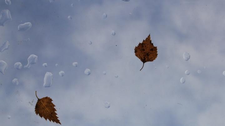 В среду Поморье ждут дожди и порывистый ветер