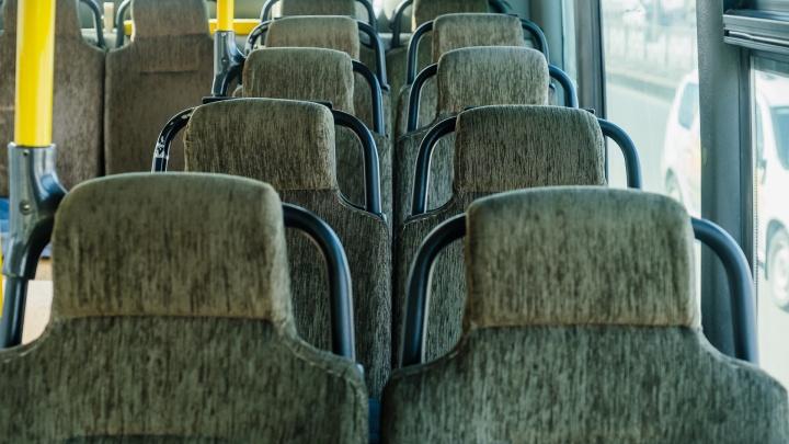 В новогодние каникулы в Перми изменится работа общественного транспорта