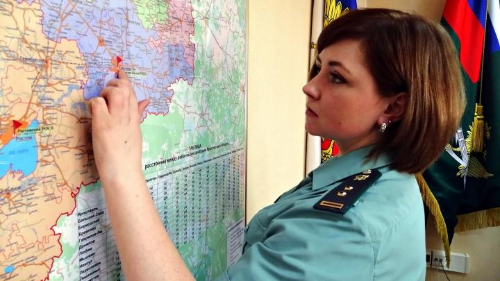 Назвали города в Ярославской области, где живёт больше всего мам-кукушек, бросивших своих детей
