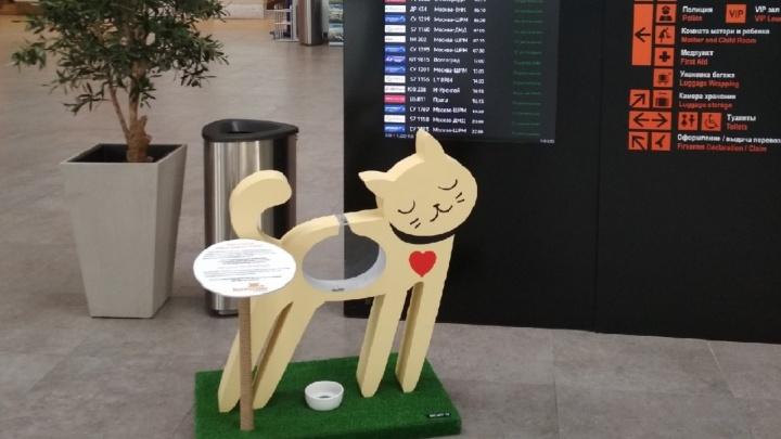 В пермском аэропорту установили фигуру кошки, которую можно «накормить»