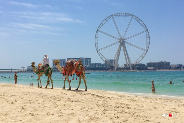 Провести неделю на пляже и не обанкротиться — сложно, но можно, уверяют туроператоры