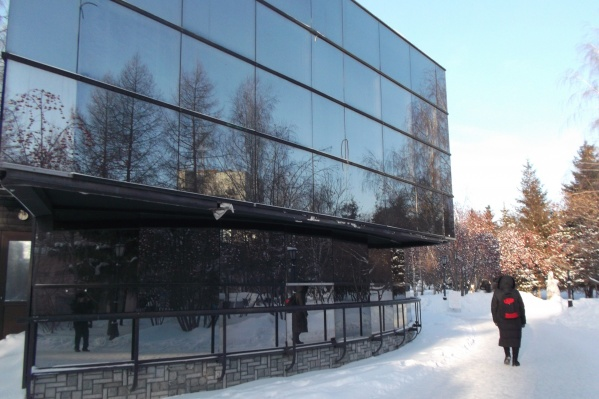 Птицы врезались в стеклянное здание кафе в Первомайском сквере