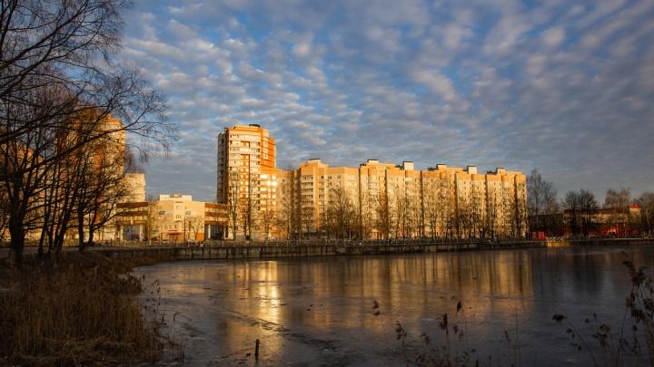 Назвали самые опасные места в Ярославле, куда лучше не соваться зимой