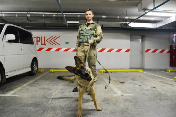 Специалисты с собаками на охраняемых объектах сейчас все более востребованны