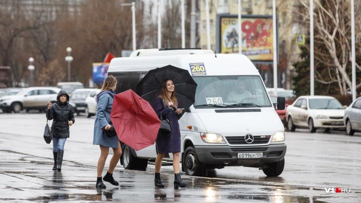 Погрелись — и хватит: летнюю погоду в Волгоградской области сменят дожди и сильный ветер