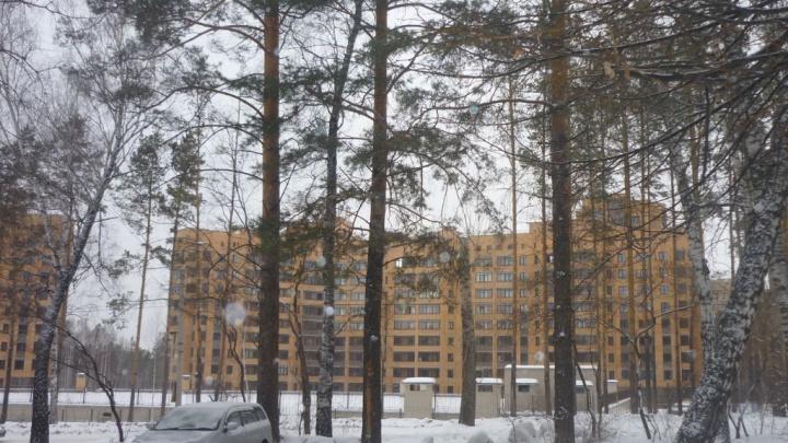 Аналитики составили рейтинг самых дорогих улиц Новосибирска