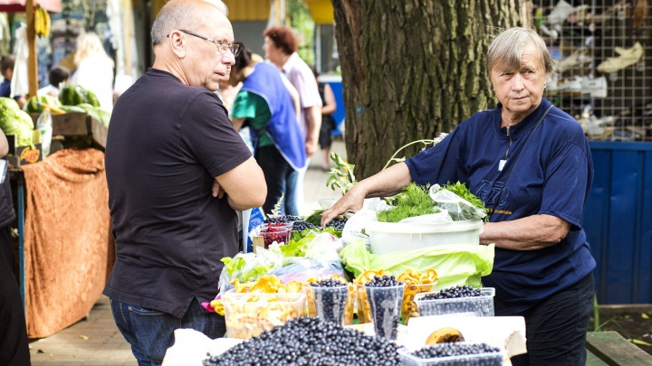 Пенсионерам бесплатно дадут проверить на безопасность овощи с огорода