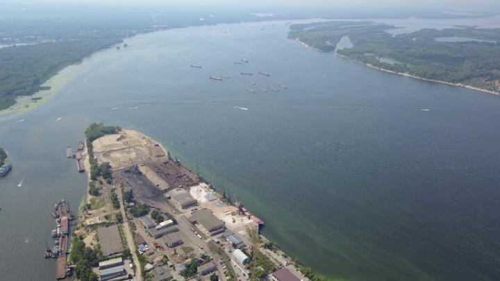 «Вся покрыта зеленью»: горожане сняли на видео, как Волга поменяла свой цвет
