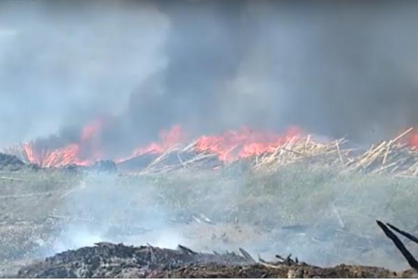 Очередной пожар на лесопилке в Канске