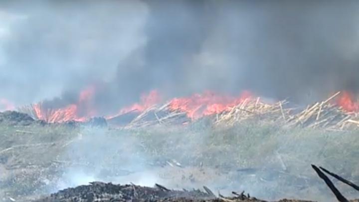 В Канске эпично вспыхнула лесопилка. В 2017 такой пожар уничтожил десятки домов, пожарные бессильны