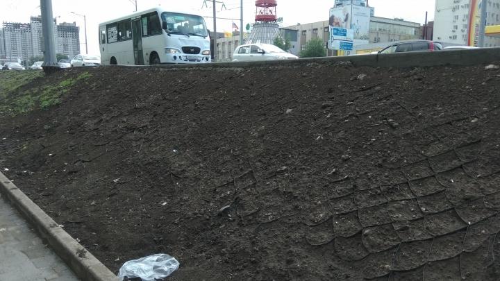 Рабочие засыпали размытую обочину Московского шоссе напротив ботанического сада