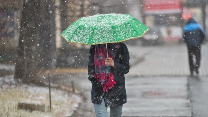 Свердловские синоптики пообещали мокрый снег и дождь