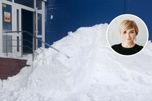 Сообщение чиновницы выложилаобщественница Дарья Макарова