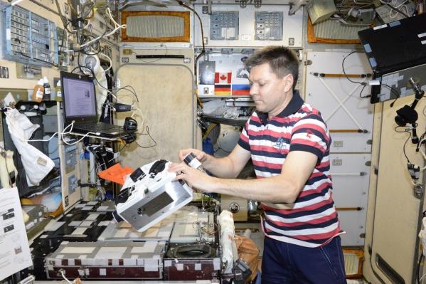 На биопринтере, сделанном в России, образцы хрящевой ткани впервые напечатали в космосе