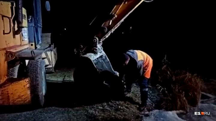 Строители в ковше экскаватора спасли пса, который провалился под лед на Шарташе: видео