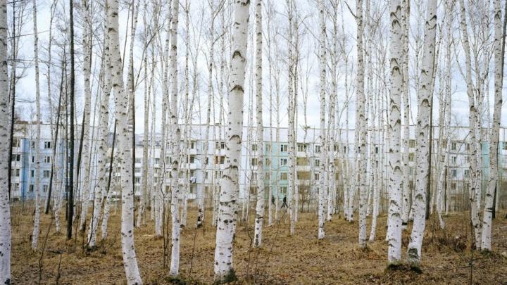 Снимают футболистов и Сибирь: в Пермь привезут работы современных фотографов