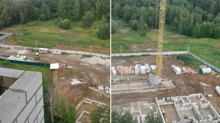 Директор департамента строительства открестился от ответа за застройку Павловской рощи