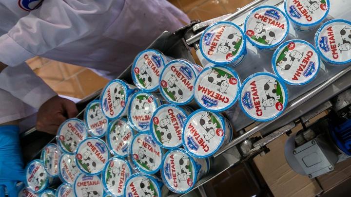 Маршрут молока: экскурсия по заводу, где производят популярную уральскую сметану, творог и сырки