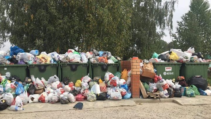 Власти нашли виноватых в том, что ярославские дворы оказались завалены мусором