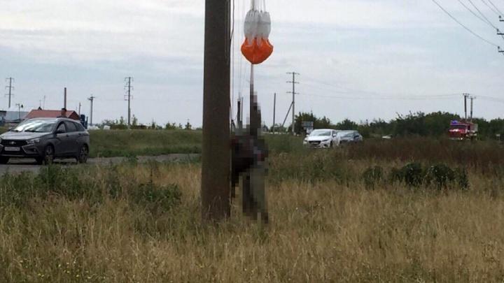 Очевидцы: под Тольятти парашютист упал на провода и погиб
