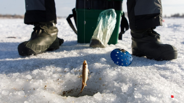 «Ловить рыбу и кататься с горки будем законно»: волгоградцев зовут на зимнюю рыбалку с донской ухой