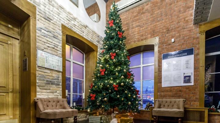 Восемь вечеров перед Рождеством, или Куда сходить с родными на январские каникулы